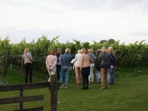 Bezoek wijngaard dames 'VOF'